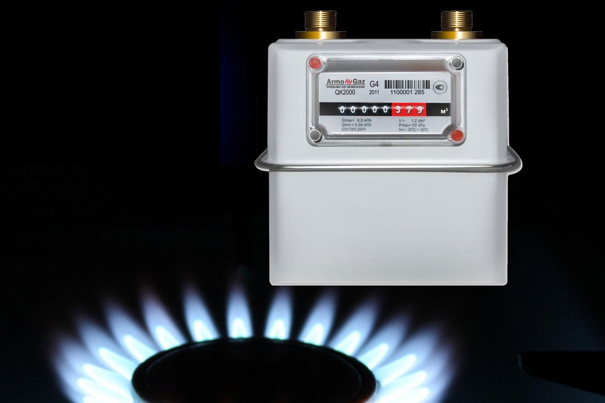В Госдуме предложили штрафовать россиян за отказ ставить счетчик газа